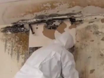 Crew member removing black mold