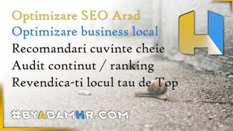 Optimizare-SEO-Arad-ByAdamHr