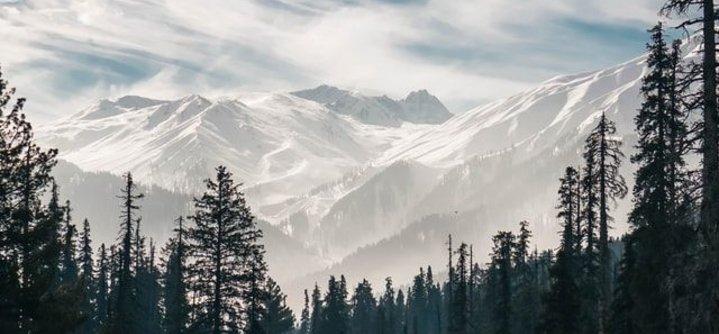 Kashmir winter trip-snow