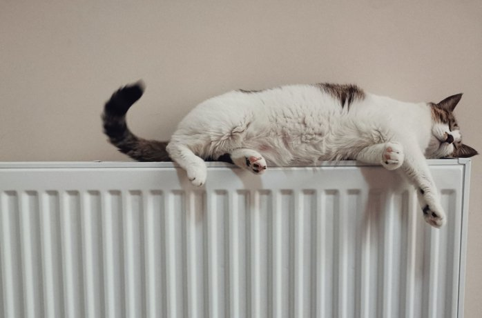 Coleraine plumbers will install radiators and central heating that keeps all of the family warm
