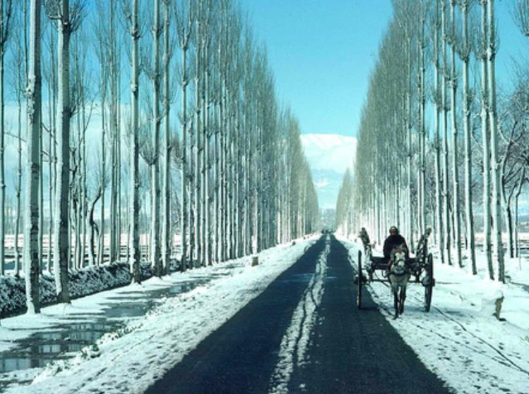 Kashmir winter trip-OJ